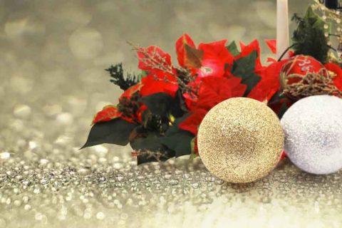 【まとめ:2020ハロウィン/クリスマス/お正月】今年の新商品は?既存は?年末付近のイベント商材